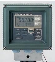 GD402G气体密度分析仪
