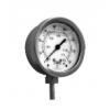 金属管快速接头式压力表PTS
