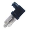 隔离硅压阻传感器LY3(小巧型)