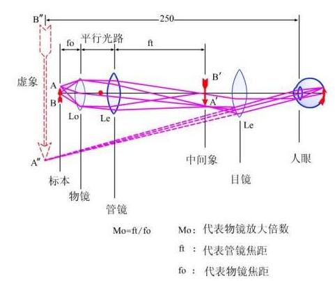 调焦传动结构图