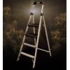 美国WERNER稳耐 铝合金宽踏板三、四级家用梯 234T-3CN 优雅金