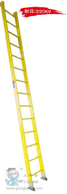 美国WERNER稳耐 全玻璃钢耐高压直梯 9512-1