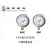 SGX/SGF系列 不锈钢低压表-德威尔Dwyer