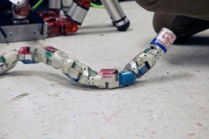 """仿生蛇形机器人:模块化设计""""放飞自我"""""""