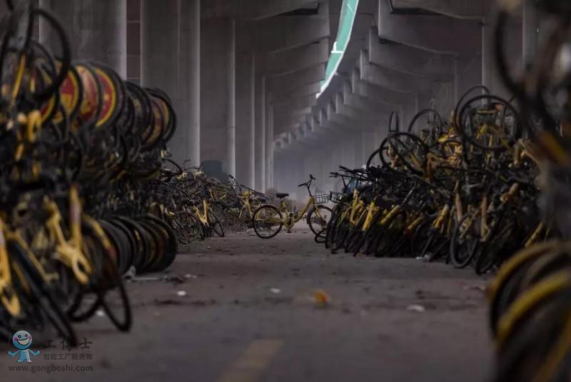 ofo共享单车2