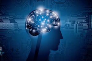 新的人工智能诊断程序可以预测是否感染新冠肺炎