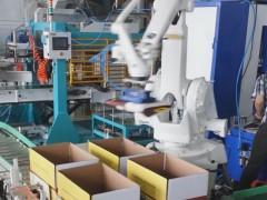 ABB机器人装箱打包项目 (2播放)